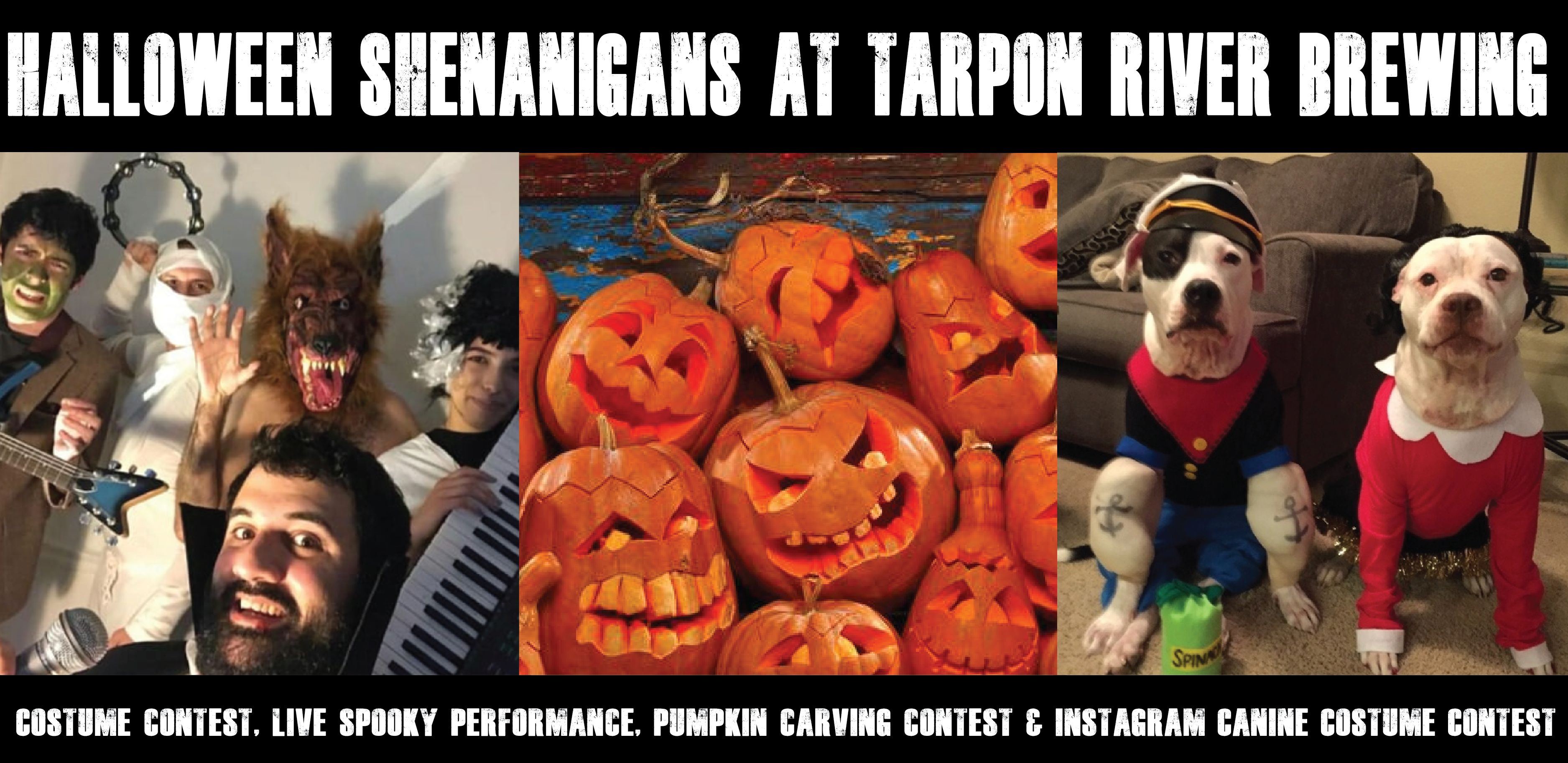 Halloween at Tarpon River Brewing